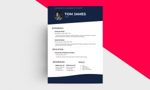 CV/Resume – Nurse V Template