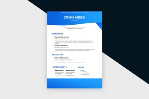 CV/Resume – Accountant II Template