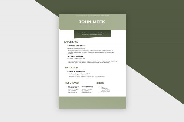 CV/Resume – Accountant III Template