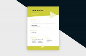 CV/Resume – Delivery Driver III Template